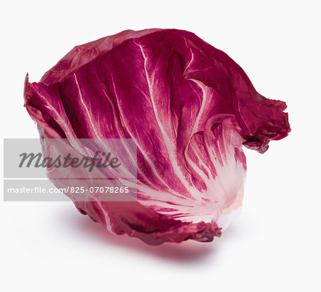 Red chicory leaf Stock Photo - Rights-Managed, Image code: 825-07078265