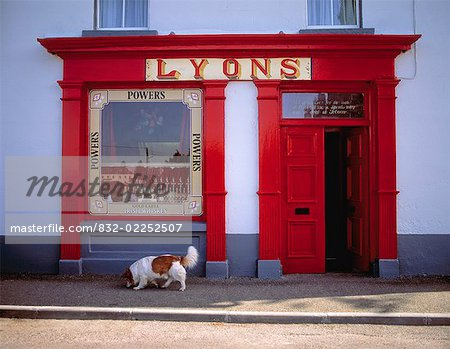 Dog in front of a shop, Ardagh, County Longford, Ireland Stock Photo - Rights-Managed, Image code: 832-02252507