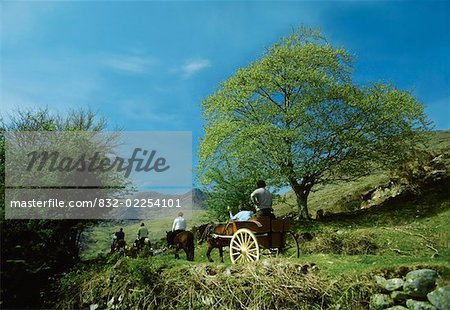 Co Kerry, Killarney, Gap of Dunloe Stock Photo - Rights-Managed, Image code: 832-02254101