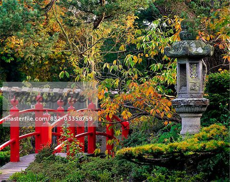 Red Bridge & Japanese Lantern, Autumn, Japanese Gardens, Co Kildare, Ireland Stock Photo - Rights-Managed, Image code: 832-03358759