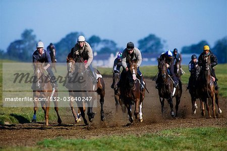 The Curragh, County Kildare, Ireland, Horse Racing