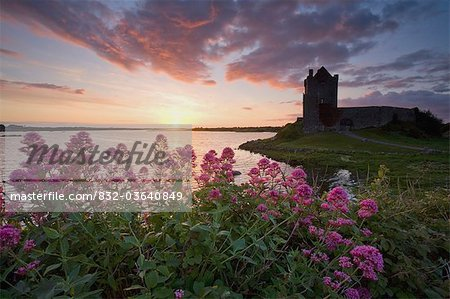 Sunset Over Dunguaire Castle, Kinvara, County Galway, Ireland Stock Photo - Rights-Managed, Image code: 832-03640849
