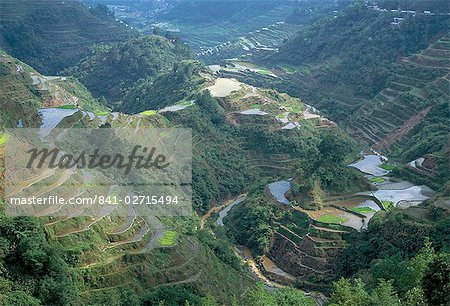 Banaue terraced rice fields, UNESCO World Heritage Site, northern area, island of Luzon, Philippines, Southeast Asia, Asia Stock Photo - Rights-Managed, Image code: 841-02715494