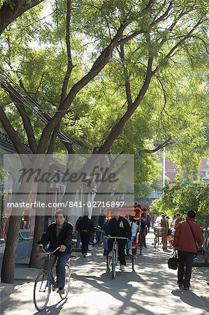 A tree lined avenue in a local neighbourhood Hutong area of Beijing, China, Asia Stock Photo - Rights-Managed, Image code: 841-02716897