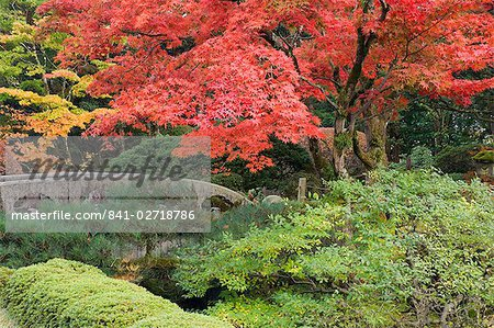 Shojo-en Zen Garden, Nikko, Central Honshu (Chubu), Japan, Asia Stock Photo - Rights-Managed, Image code: 841-02718786