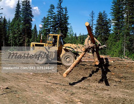 Loading logs, British Columbia, Canada, North America Stock Photo - Rights-Managed, Image code: 841-02824647