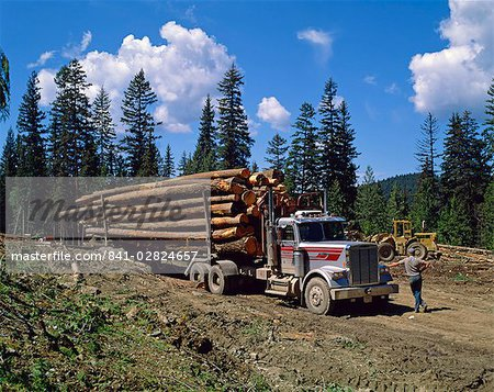 Logging truck, British Columbia, Canada, North America Stock Photo - Rights-Managed, Image code: 841-02824657