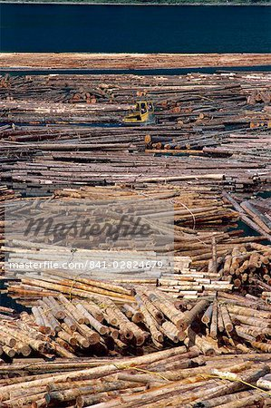 Sorting logs for mill, British Columbia, Canada, North America Stock Photo - Rights-Managed, Image code: 841-02824679