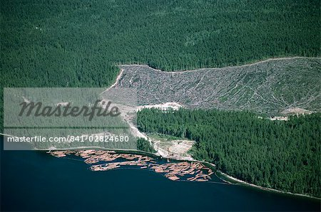 Logged area and surrounding forest from the air, British Columbia, Canada, North America Stock Photo - Rights-Managed, Image code: 841-02824680