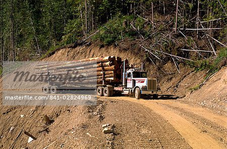 Logging truck, British Columbia, Canada, North America Stock Photo - Rights-Managed, Image code: 841-02824969