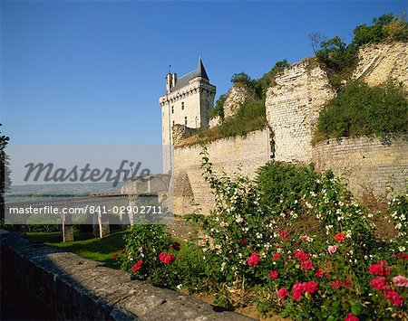 Chateau de Chinon, Indre-et-Loire, Loire Valley, France, Europe Stock Photo - Rights-Managed, Image code: 841-02902711