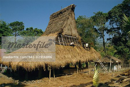 Men thatching the roof of a house near Moni, Flores, Indonesia, Southeast Asia, Asia Stock Photo - Rights-Managed, Image code: 841-02916886