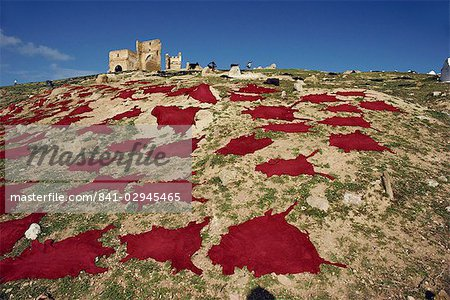 Dyed goat skins drying near Merenid Tombs, Fez el Bali, Morocco, North Africa, Africa Stock Photo - Rights-Managed, Image code: 841-02945465