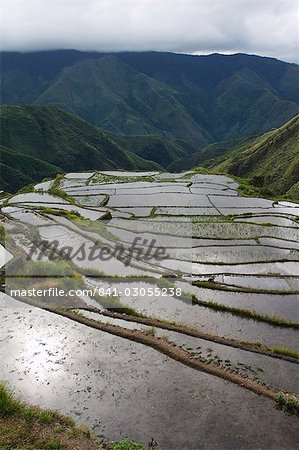 Afternoon sunshine reflected on water filled rice terraces near Tinglayan, The Cordillera Mountains, Kalinga Province, Luzon, Philippines, Southeast Asia, Asia Stock Photo - Rights-Managed, Image code: 841-03055238