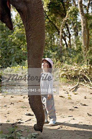 Two year old girl and the elephant that will take her on safari, at the Island Jungle Resort hotel, Royal Chitwan National Park, Terai, Nepal, Asia Stock Photo - Rights-Managed, Image code: 841-03062394
