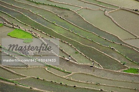Aerial of the rice terraces around the village of Batad in the Mountain Province in north Luzon island, the Philippines, Southeast Asia, Asia Stock Photo - Rights-Managed, Image code: 841-03067433