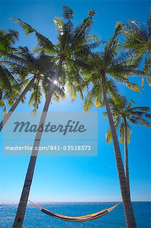 Hammock between palm trees on beach, Bali, Indonesia, Southeast Asia, Asia Stock Photo - Rights-Managed, Image code: 841-03518373