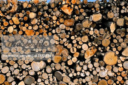 Wood detail, Tuscany, Italy, Europe Stock Photo - Rights-Managed, Image code: 841-03673834