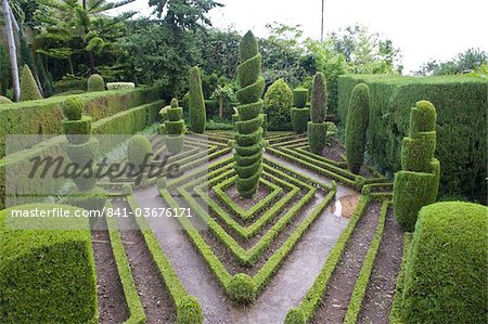 Topiary in formal garden, Botanical Garden, Funchal, Madeira, Portugal, Europe Stock Photo - Rights-Managed, Image code: 841-03676171