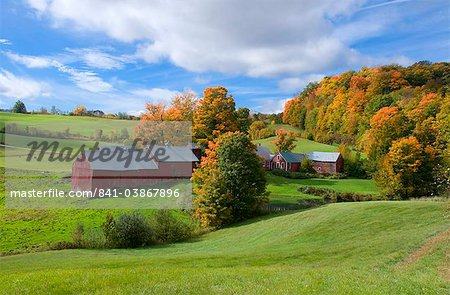 Autumn foliage surrounding red barns at Jenne Farm in South Woodstock, Vermont, New England, United States of America, North America Stock Photo - Rights-Managed, Image code: 841-03867896
