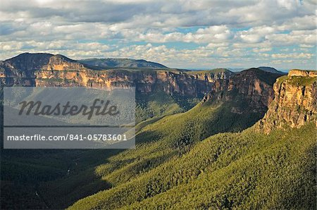 View of Grose Valley, Blue Mountains, Blue Mountains National Park, UNESCO World Heritage Site, New South Wales, Australia, Pacific Stock Photo - Rights-Managed, Image code: 841-05783601