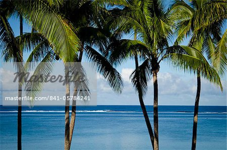 Viti Levu, Fiji, Melanesia, Oceania, Pacific Islands, Pacific Stock Photo - Rights-Managed, Image code: 841-05784241