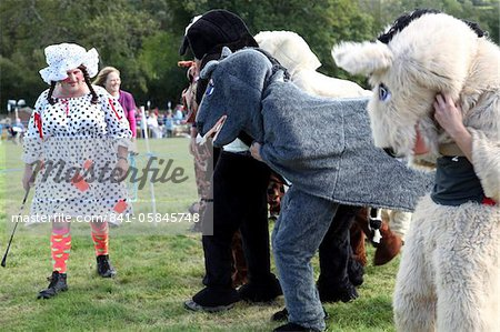 Pantomime horse race with Dame as starter, Widecombe Fair, Dartmoor, Devon, England, United Kingdom, Europe Stock Photo - Rights-Managed, Image code: 841-05845748