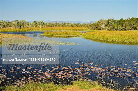 Tyto Wetlands, Ingham, Queensland, Australia, Pacific Stock Photo - Rights-Managed, Image code: 841-05960870