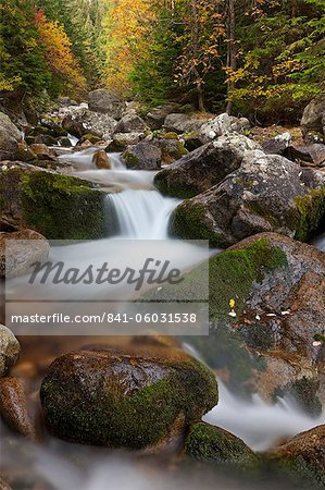 Rocky mountain stream through autumn woodland, Tatra Mountains, Slovakia, Europe Stock Photo - Rights-Managed, Image code: 841-06031538