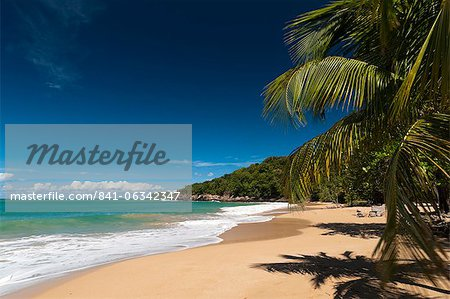 La Perle Beach, Deshaies, Basse-Terre, Guadeloupe, French Caribbean, France, West Indies, Central America Stock Photo - Rights-Managed, Image code: 841-06342347