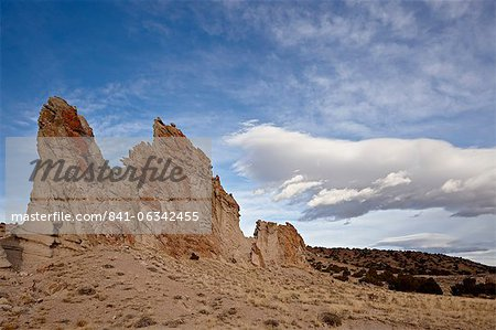 Rock fin, Carson National Forest, New Mexico, United States of America, North America Stock Photo - Rights-Managed, Image code: 841-06342455