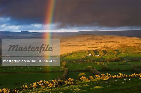 Rainbow above rolling farmland on the edges of Dartmoor National Park, Devon, England, United Kingdom, Europe Stock Photo - Rights-Managed, Image code: 841-06343475
