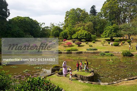 Visitors in the Royal Botanical Garden, Peradeniya, Kandy, Sri Lanka, Asia Stock Photo - Rights-Managed, Image code: 841-06344483