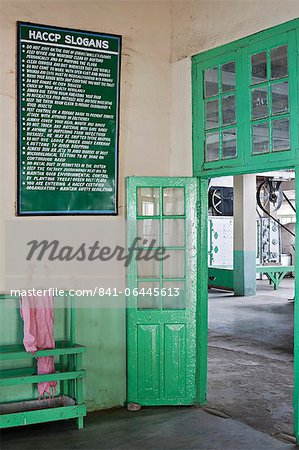 Glenburn Tea Factory, near Darjeeling, West Bengal, India, Asia Stock Photo - Rights-Managed, Image code: 841-06445613