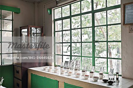 Glenburn Tea Factory, near Darjeeling, West Bengal, India, Asia Stock Photo - Rights-Managed, Image code: 841-06445624
