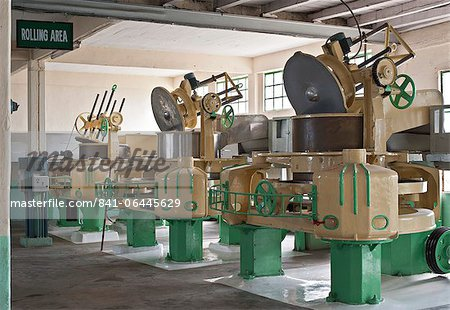 Glenburn Tea Factory, near Darjeeling, West Bengal, India, Asia Stock Photo - Rights-Managed, Image code: 841-06445629