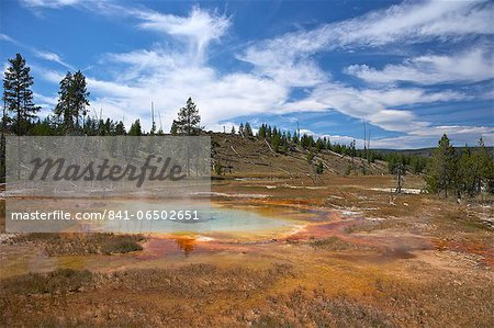 Thermal springs, Upper Geyser Basin, Yellowstone National Park, UNESCO World Heritage Site, Wyoming, United States of America, North America Stock Photo - Rights-Managed, Image code: 841-06502651