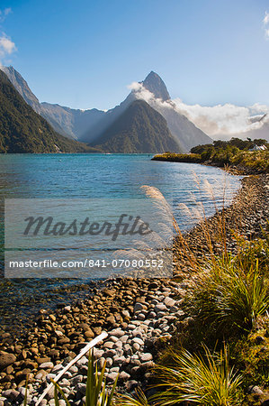 Mitre Peak, Milford Sound, Fiordland National Park, UNESCO World Heritage Site, South Island, New Zealand, Pacific Stock Photo - Rights-Managed, Image code: 841-07080552