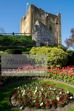 Spring flowers in ornamental beds decorate Guildford Castle, Guildford, Surrey, England, United Kingdom, Europe Stock Photo - Rights-Managed, Image code: 841-07081897