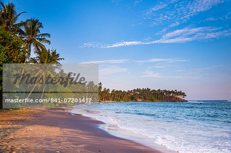 Palm trees, Mirissa Beach, South Coast, Southern Province, Sri Lanka, Asia Stock Photo - Rights-Managed, Image code: 841-07201412
