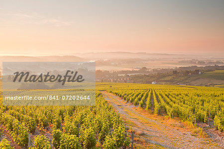The vineyards of Sancerre in the Loire Valley, Cher, Centre, France, Europe Stock Photo - Rights-Managed, Image code: 841-07202644