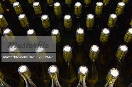 Unlabelled wine bottles, France, Europe Stock Photo - Rights-Managed, Image code: 841-07202667