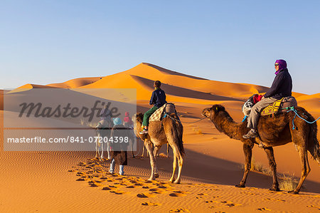 Tourists on camel safari, Sahara Desert, Merzouga, Morocco, North Africa, Africa Stock Photo - Rights-Managed, Image code: 841-07204398