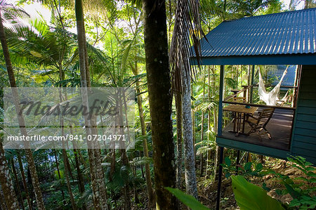 Silky Oaks Lodge in the treetops of Daintree Rainforest, Queensland, Australia Stock Photo - Rights-Managed, Image code: 841-07204971
