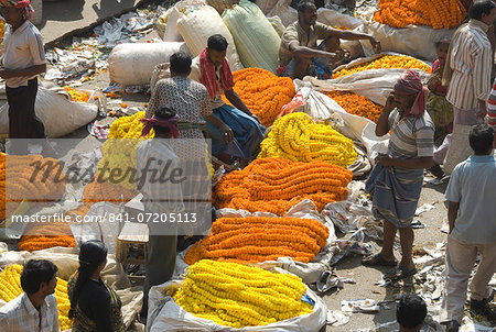 Armenia Ghat flower market, Kolkata (Calcutta), West Bengal, India, Asia Stock Photo - Rights-Managed, Image code: 841-07205113