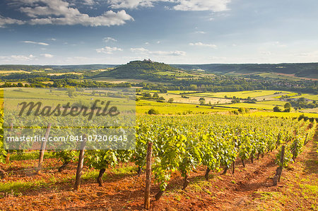 Vineyards near to the Beaux Village de France of Vezelay in the Yonne area, Burgundy, France, Europe Stock Photo - Rights-Managed, Image code: 841-07206545
