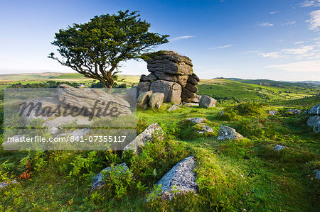 Summer at Saddle Tor in Dartmoor National Park, Devon, England, United Kingdom, Europe Stock Photo - Rights-Managed, Image code: 841-07355117