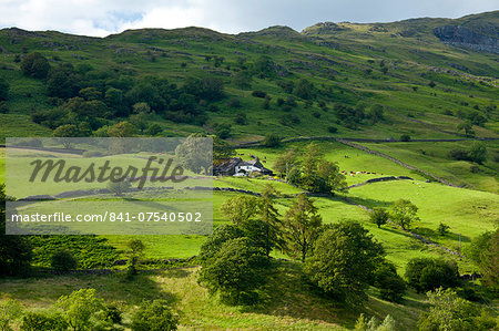 Hill farm near Ambleside in the Lake District National Park, Cumbria, UK Stock Photo - Rights-Managed, Image code: 841-07540502