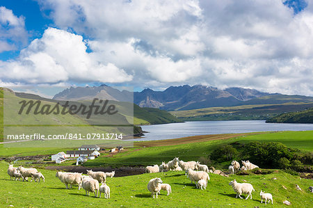 The Cuillin mountain range with croft farm, sheep and Loch Harport near Coillure, Isle of Skye, Inner Hebrides, Highlands and Islands, Scotland, United Kingdom, Europe Stock Photo - Rights-Managed, Image code: 841-07913714