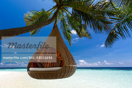 Sofa hanging on a tree on the beach, Maldives, Indian Ocean, Asia Stock Photo - Rights-Managed, Image code: 841-08211696